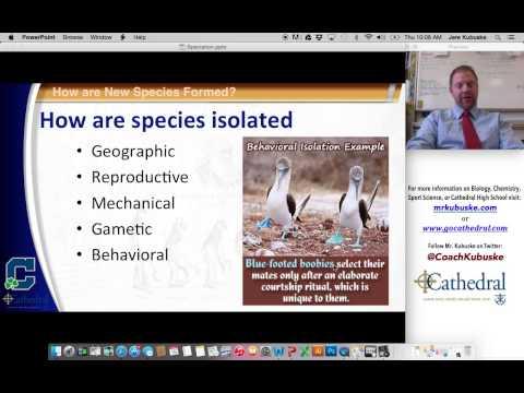 Speciation & Cladistics