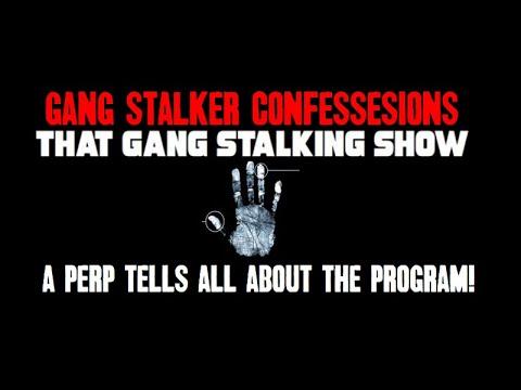 Confession of A Gang Stalker