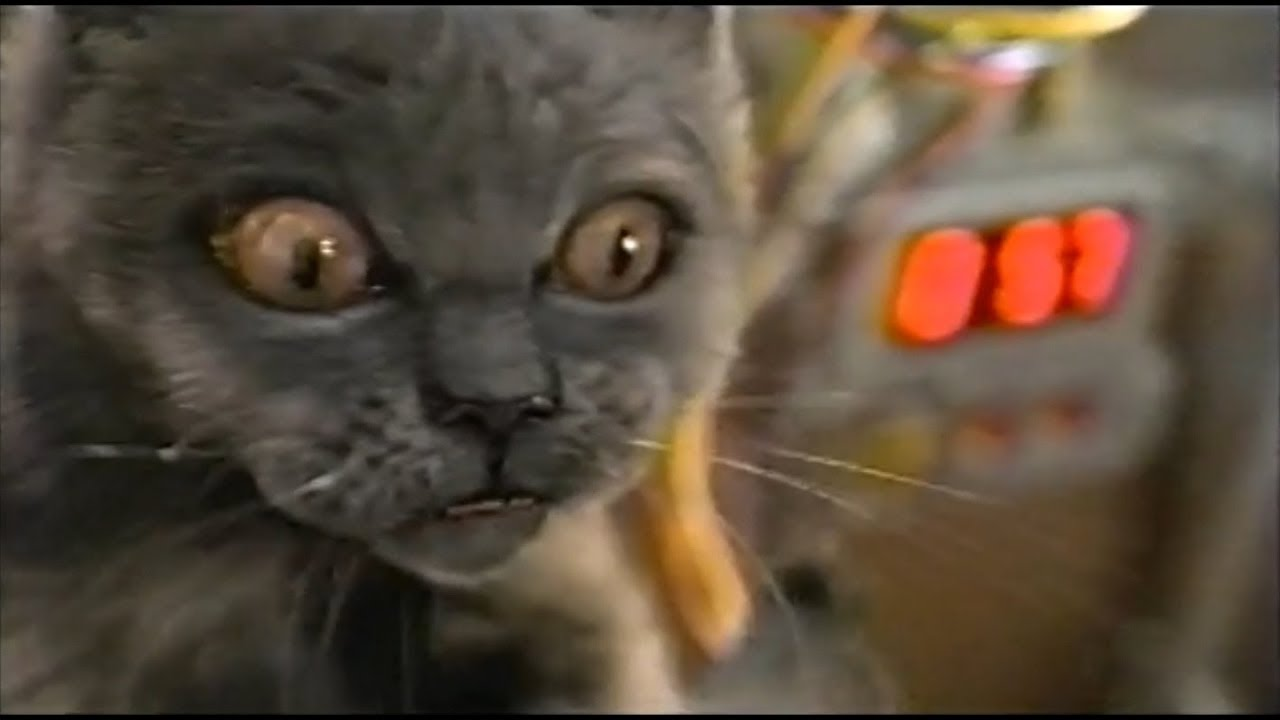 cats and dogs 2001 movie