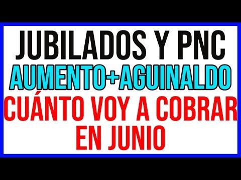 CUANTO COBRO EN JUNIO DE 2021 de anses - JUBILADOS Y PENSIONADOS PNC