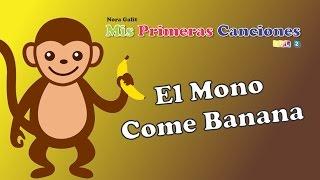 Video Nora Galit - El Mono Come Banana download MP3, 3GP, MP4, WEBM, AVI, FLV Oktober 2018
