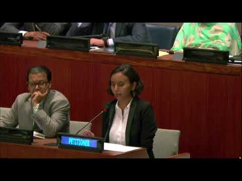 Neveen Abu Elula Addressing the United Nations 4th Committee