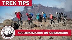 Acclimatization while Climbing Kilimanjaro | Trek Tips