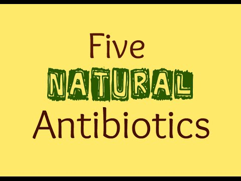 5 Natural Antibiotics!