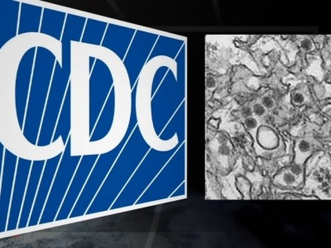 CDC: Pregnant Women at Greatest Risk for Zika