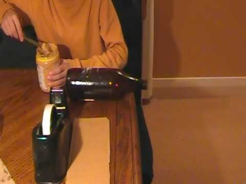 How To build a highly effective mouse trap from household items! - YouTube