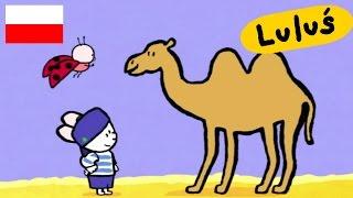 Luluś - Narysuj mi wielbłąda S01E03 HD // Kreskówki dla dzieci