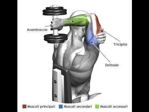 Bodybuilding  |  Latihan Membentuk Otot Tricep/ Lengan bagian Belakang