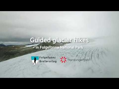 Guided glacier hikes in Folgefonna National Park