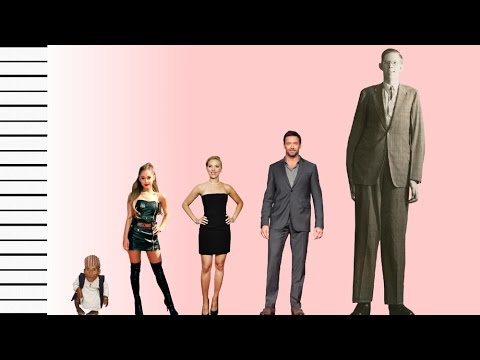 How Tall Is Ariana Grande? - Celebrity Height Comparison! - YouTube