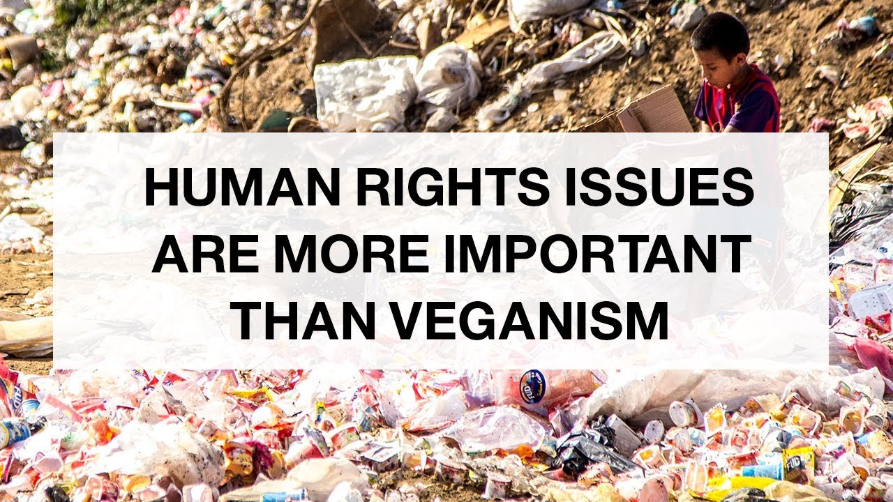 Human Rights Issues are More Important Than Veganism