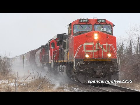 TRAINS: CN Freight