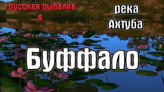 Русская рыбалка 4 рр4 rf4 река Ахтуба Буффало большеротый