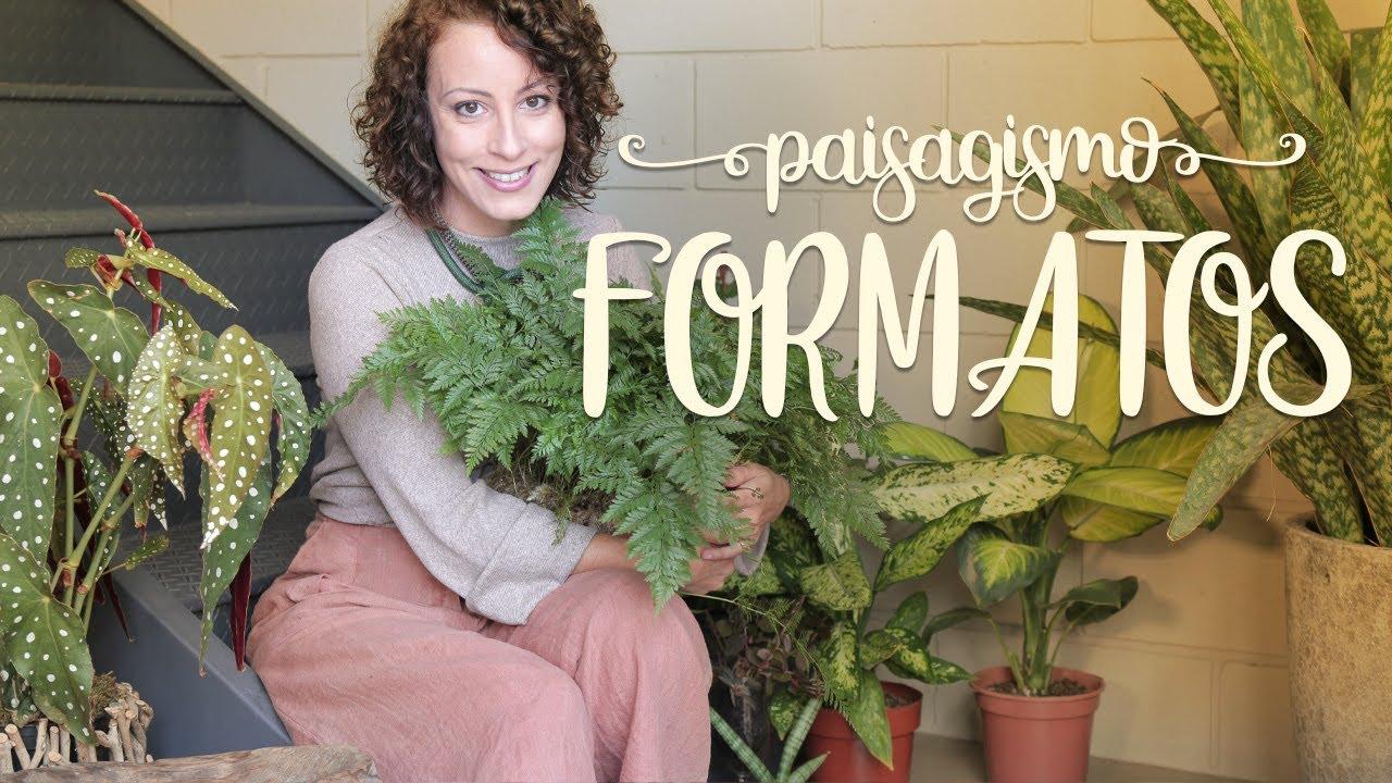 Como ORGANIZAR as PLANTAS: Formatos