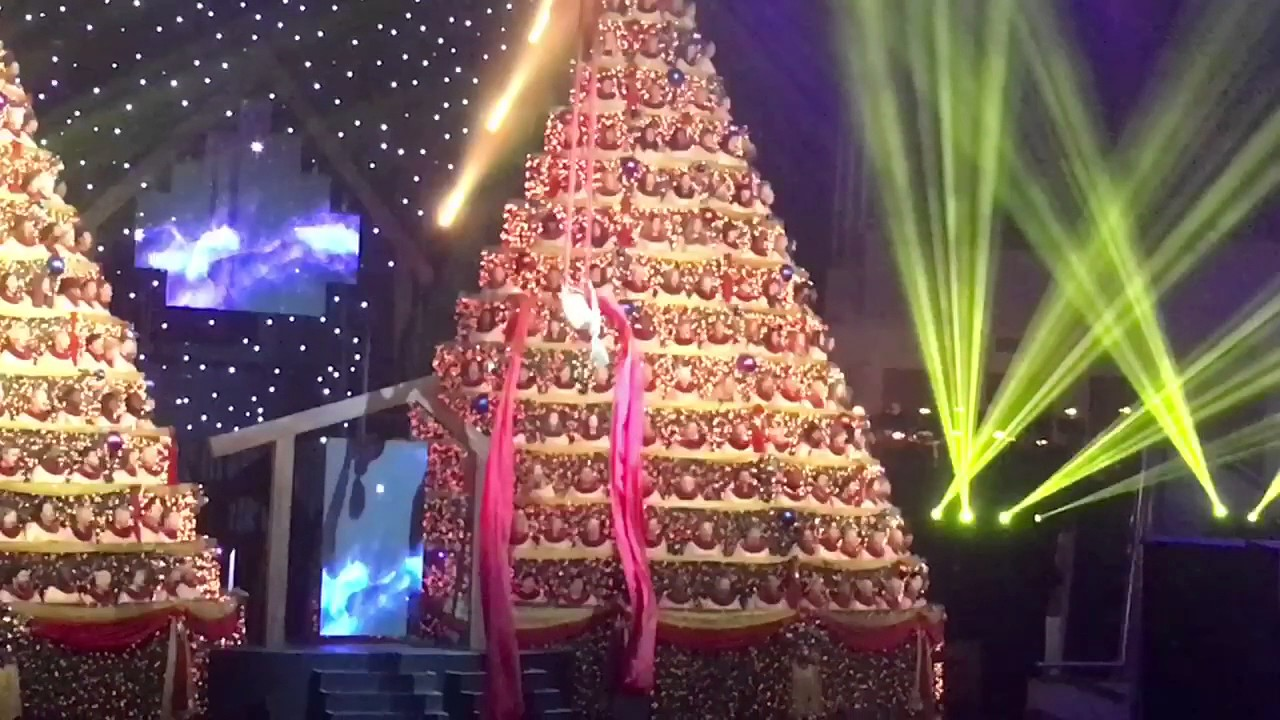 Singing Christmas Tree.Singing Christmas Trees Orlando 2016