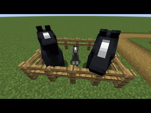 minecraft-1.15.1:how-to-breed-horses