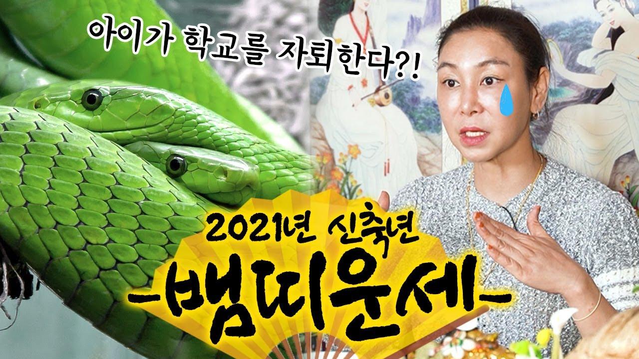 2021년 띠별운세 뱀띠 운세 대공개!!! '32세 44세 56세 68세' 나가는 삼재를 조심하라!