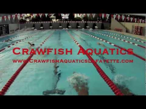 Normal Day At Practice (Crawfish Aquatics)