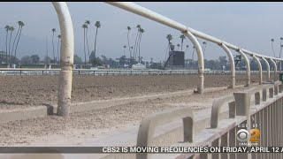 Santa Anita Racehorse Deaths Under Investigation