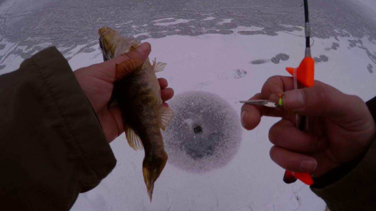 Зимняя ловля ротана на блесну видео