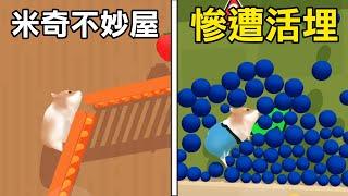 【倉鼠迷宮】把老鼠關進迷宮中! 能夠輕鬆逃脫嗎? | Hamster Maze