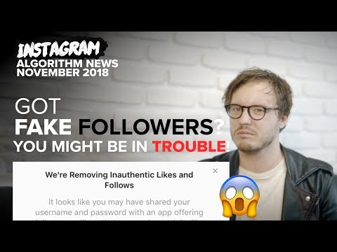 You Might Have A HUGE Problem after this Instagram Algorithm Update - November 2018