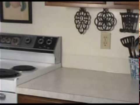 Pharaoh Ants at Home on the Range - YouTube