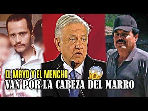 El Mayo y el Mencho pactaron, LUCHARÁN CONTRA el HUACHICOL