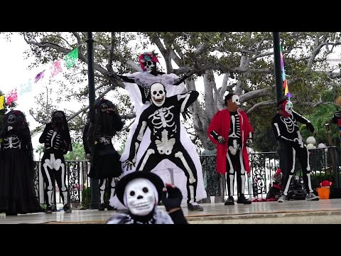 Day of the Dead Olvera on Street 2016