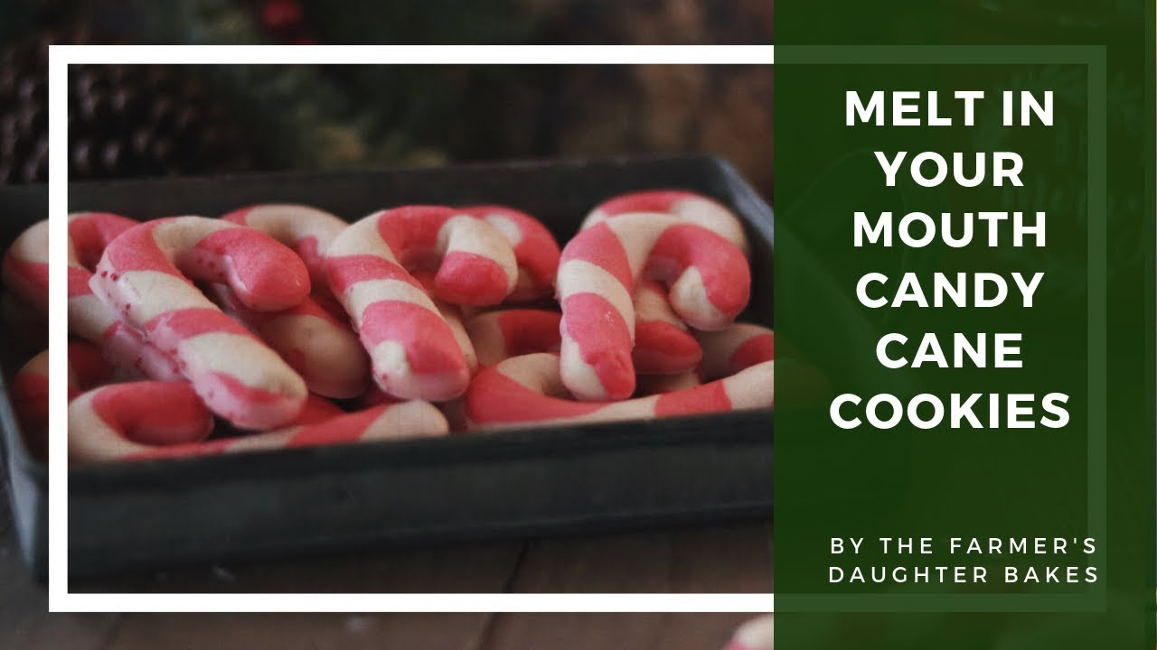 Candy Cane Cookies That Melt In Your Mouth The Farmers Daughter Bakes