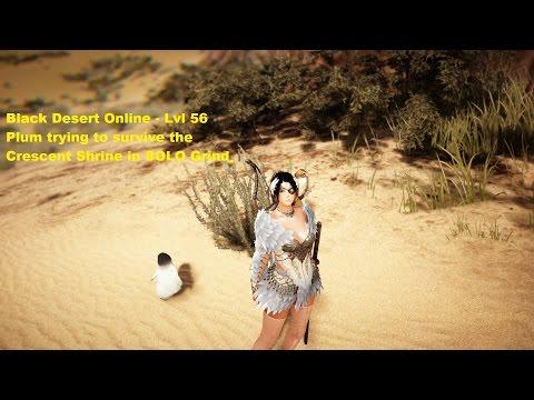 Black Desert Online - Lvl 56 Plum Valencia Crescent Shrine SOLO Grind (Full HD)