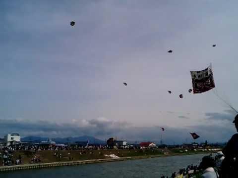 白根大凧合戦2012年6月11日.3GP