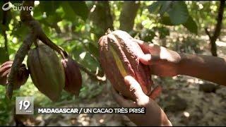 Cacao de Madagascar -  RTBF