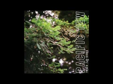 Pacific Yew - Moon Day
