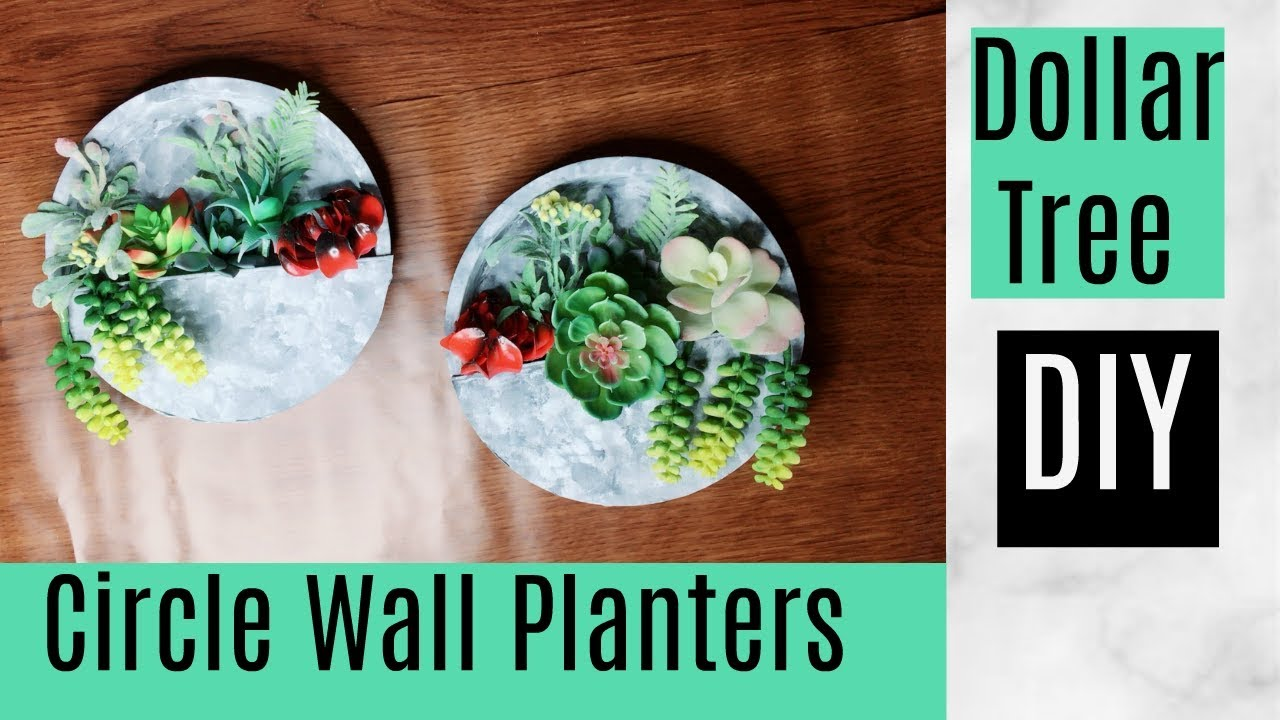 Diy Dollar Tree Circle Wall Planters Great For Exterior Or