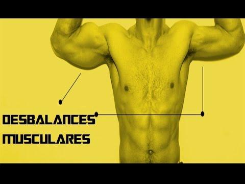 Tengo un músculo más grande que el otro (brazo/pectoral/hombro ...