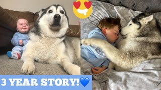 3 Years Of Love Between My Husky & Baby!! [CUTEST VIDEO EVER!] [WITH MUSIC]