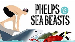 Michael Phelps Races Against A Great White Shark, Squid, Sea Turtle And More Sea Beasts | TIME