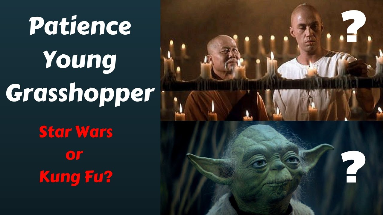 Patience Young Grasshopper Quote Origin Star Wars Or Kung Fu