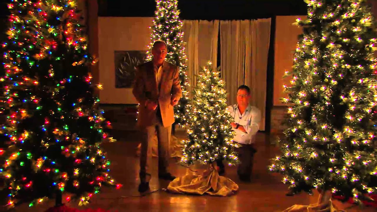 bethlehem lights 9 aspen pine christmas tree winstant power with dan hughes youtube
