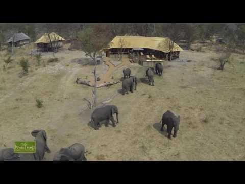 Khulu Ivory Lodge Hwange National Park Zimbabwe