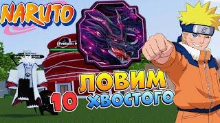 Режим WAR - Ловим 10 хв 🔴 Шиндо Лайф Роблокс СТРИМ Tyn Tailed Spirit