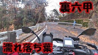 【モトブログ#578】峠の濡れ落ち葉がヤバい件【Ninja1000】