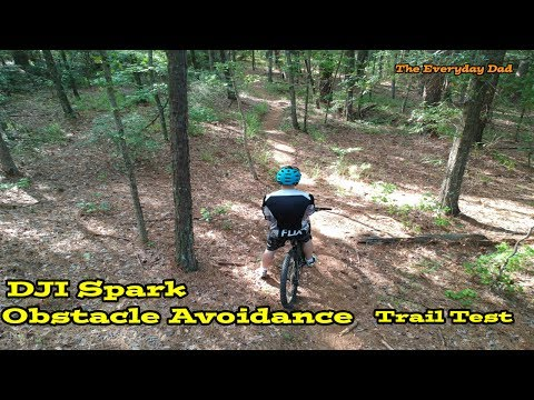 DJI Spark Obstacle Avoidance Review Trail Test!  Can it dodge a tree?