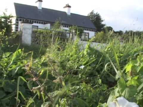 From the Kitchen to the World Stage: The Farmer Musicians of County Sligo