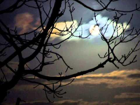 Debussy - Quatre mélodies sur des poèmes de Paul Verlaine