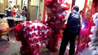 Lion Dance at Kin Kee Chinese Restaurant in Perth Chinatown 2014
