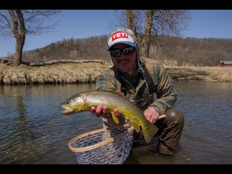 Wisconsin Fly Fishing, Fly Fishing For Trout, Wisconsin Driftless, Brown Trout Fishing