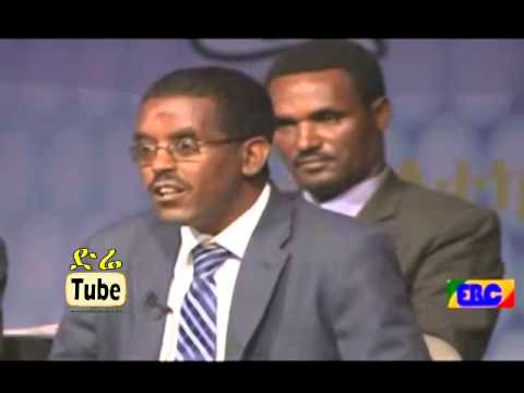 Ethiopian Political Parties Debate for Election 2015, Organi