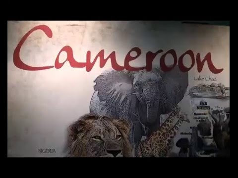 CAMEROON, Welcome to Cameroon (cultural diversity)